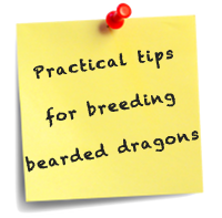 Tips on Breeding