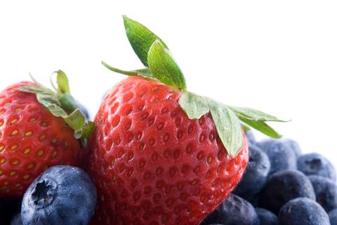 Fancy Bearded Dragon Diet Fruits - cosmictoday