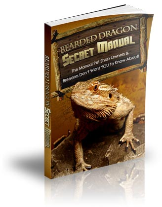 The Bearded Dragon Secret Manual