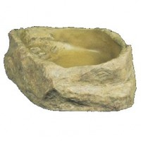 Bearded Dragon Water Bowl